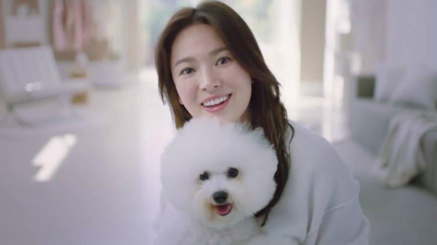 宋慧喬接下電器品牌代言人,並錄製一段韓國、台灣、香港、新加坡的前導廣告,其中台灣篇裡,用中文向台灣民眾問好,甜喊「台灣你好,我是宋慧喬。」讓不少網友直呼「發音好標準」。 「喬妹」抱愛犬 標準中文甜喊台灣你好!