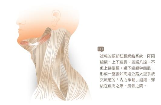 ▲圖片來源/三采文化提供
