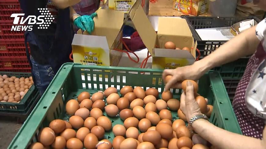 圖/TVBS 雞蛋芬普尼超標 彰化連成蛋場高達30倍