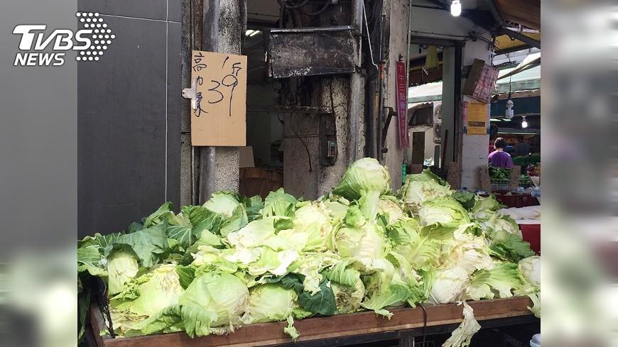 圖/中央社 菜價回跌2成3 市售高麗菜也跌了