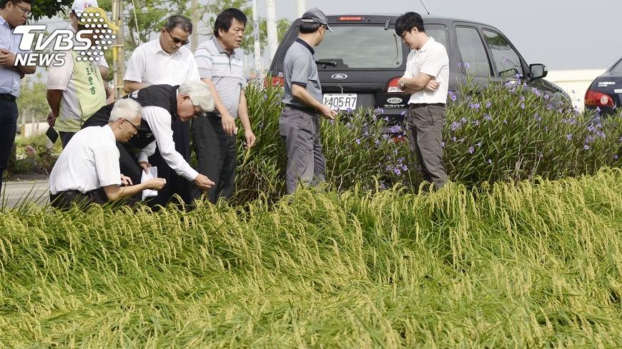 圖/中央社 暴雨災損證明 一個月內要申請