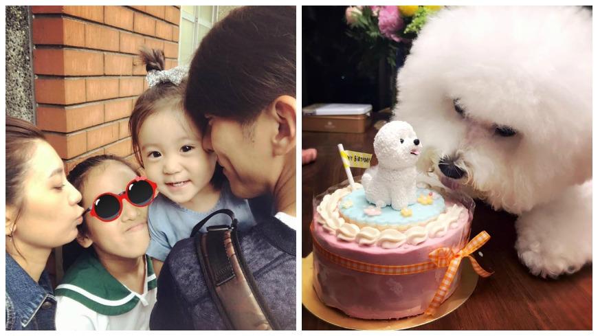 圖/取自賈靜雯臉書 賈靜雯訂製蛋糕幫梧桐妹慶生 愛犬萌盯模型:這我?