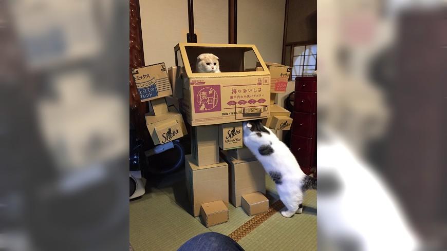 焊接工老婆幫設計師老公完成機器人的夢想。圖/Twitter  倉持キョーリュー 完成度超高  焊接工老婆巧手製「紙箱鐵金剛」