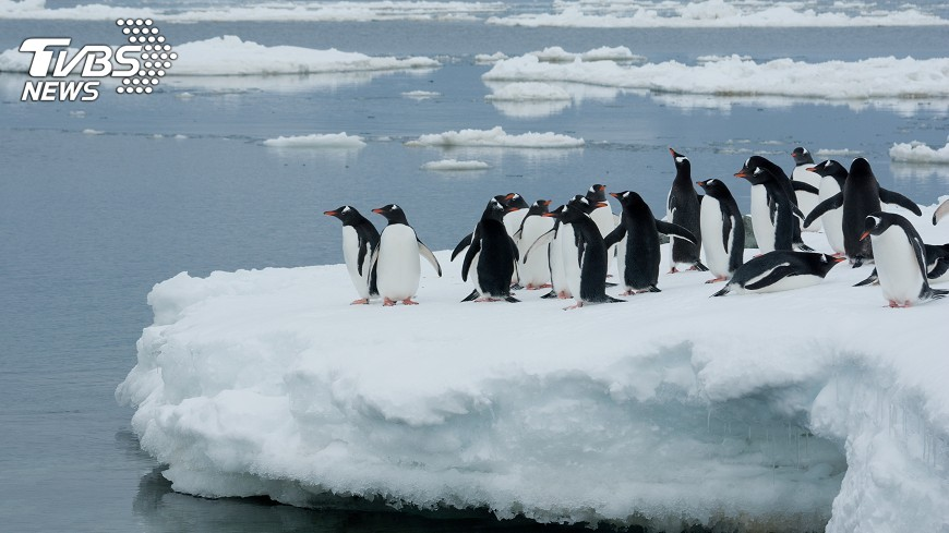 南極西部冰原消融,全球海平面恐漲3公尺,科學評估提出警示,這已經不是「如果」而是「何時」的問題。。示意圖/TVBS 南極西部冰原消融 全球海平面恐漲3公尺