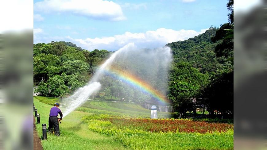圖/大溪花海農場 Ta Shee Blooming Oasis 假日去哪裡?傳統好玩的休閒農場來了