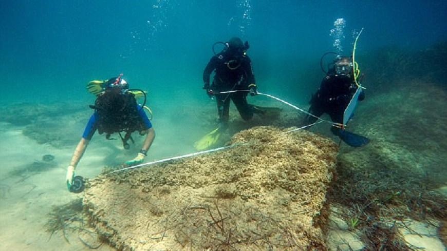 突尼西亞附近海底發現 古羅馬廢墟