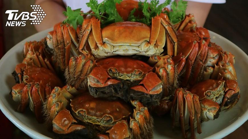 圖/中央社 9月蟹命大不同 母蟹成佳餚、公蟹忙吃飽