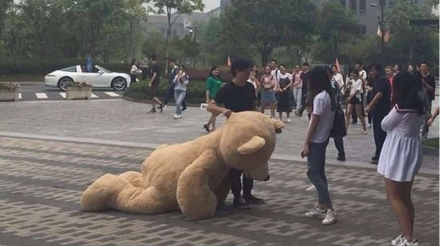 圖/擷取自搜狐網 開超跑載巨熊!富二代告白遭拒「愛熊不愛你」