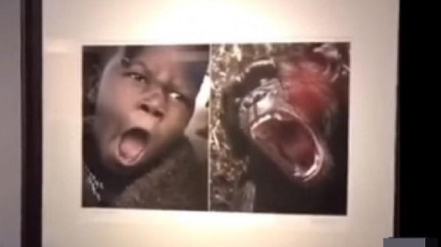 非洲人與動物並列 陸非洲攝影展惹議