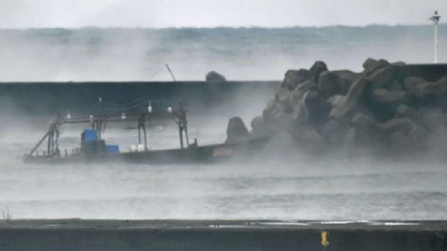 8北韓男子乘木船抵日本 日警帶回調查