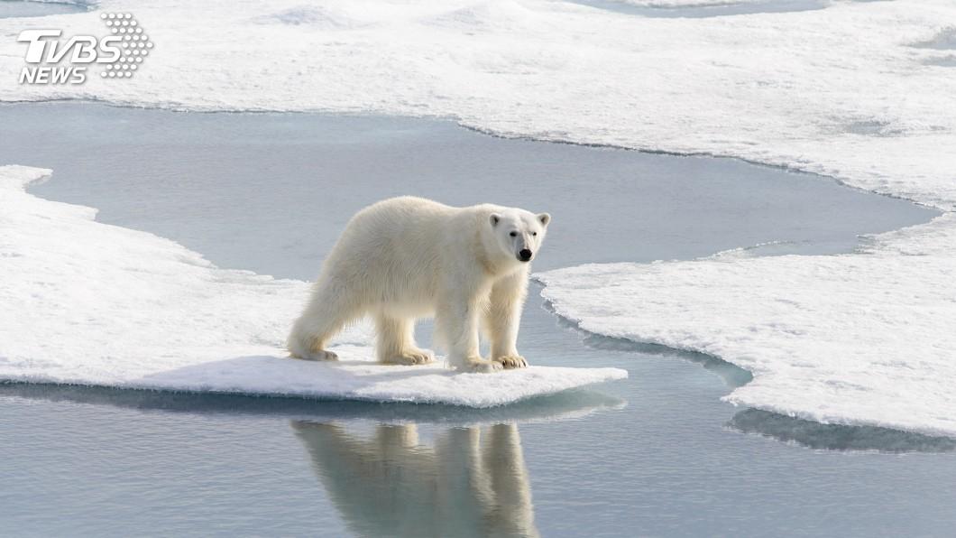 示意圖/TVBS 氣候變遷影響無可避免 報告:我們必須適應