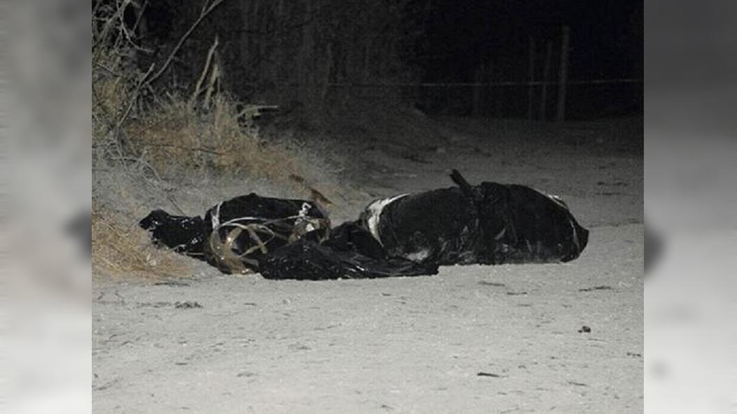 圖/翻攝自eldiariodechihuahua網站 幫派黑吃黑 男子遭凌遲剖胸活摘心臟虐殺
