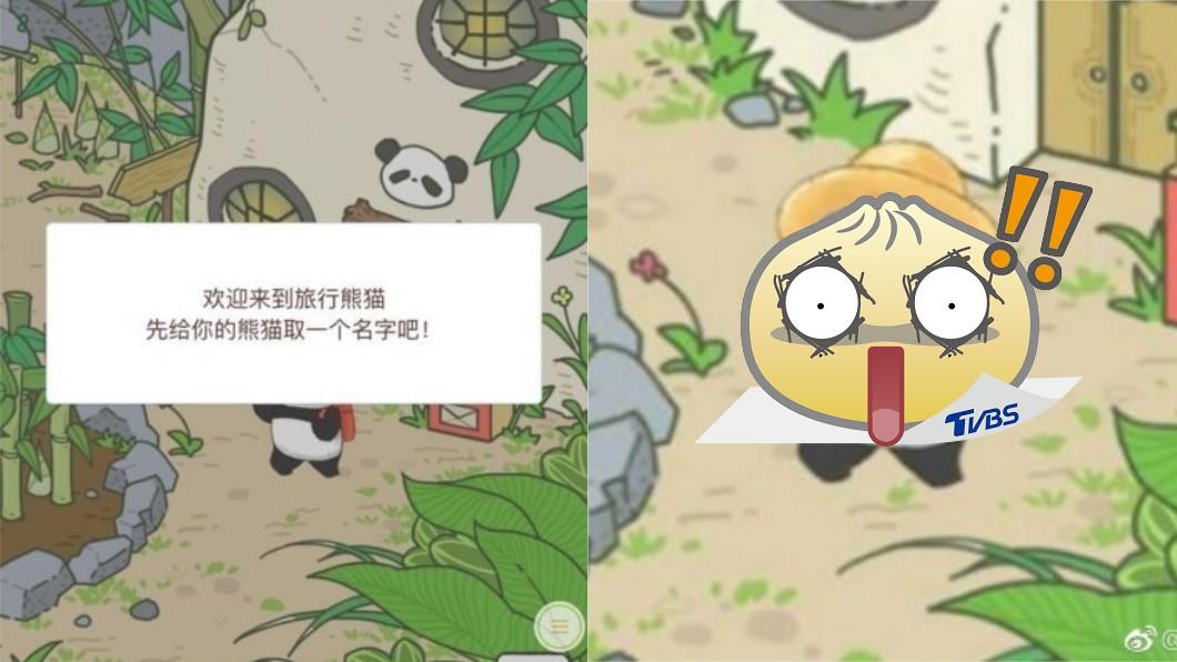圖/《美東僑報》微博 抄襲旅蛙?陸推《旅行熊貓》連自家網友都傻眼…