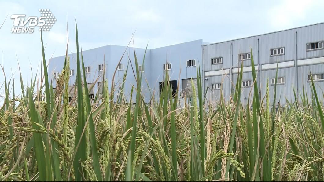 圖/TVBS 農地工廠合法 沈榮津:採三步驟進行