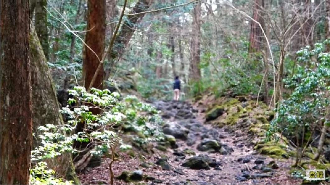該名想要尋短的男子,一直往森林深處走去。(圖/翻攝自YouTube)