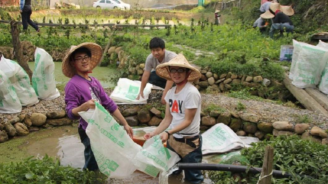 圖/青年農Stay-農村教育服務體驗推廣計畫臉書
