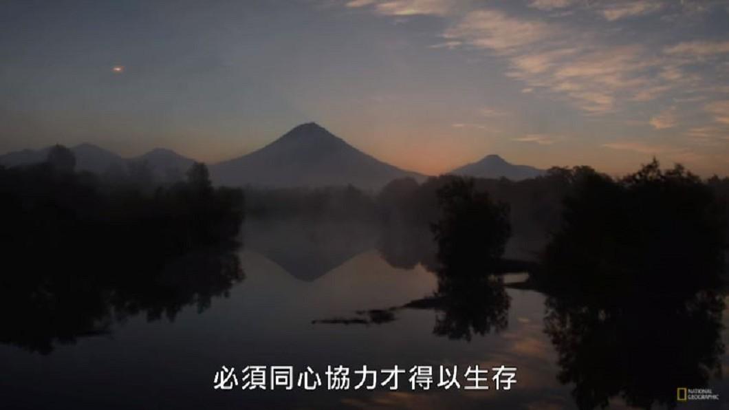圖/國家地理 National Geographic YouTube