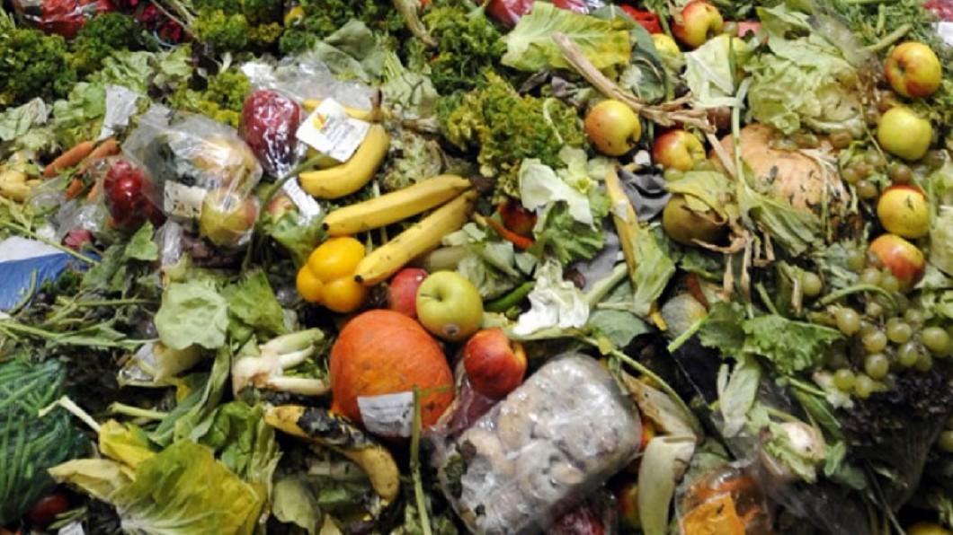 圖/翻攝自OLIO - The Food Sharing Revolution