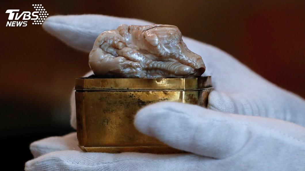 圖/達志影像路透社 世界最大淡水珍珠拍賣 新台幣1136萬落槌