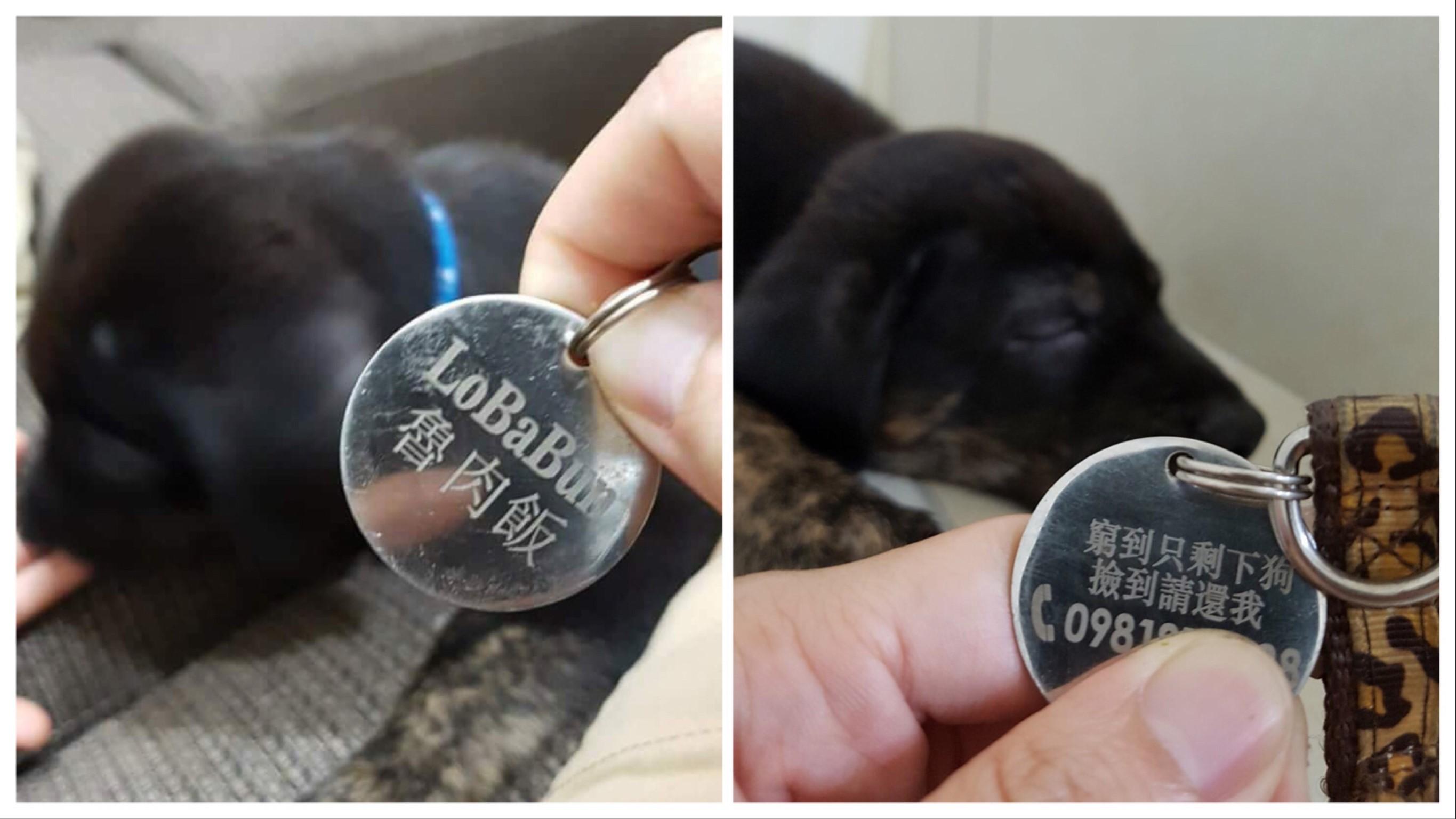 圖/網友Athena Lin授權提供 憂愛犬走失被勒索 她在狗牌上刻「這行字」網笑瘋求團購