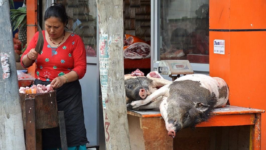 母親神回:不要因為一根香腸就養一隻豬。圖/翻攝自pixabay網站 女兒希望她再婚 母神回:別因為一根香腸就養一隻豬