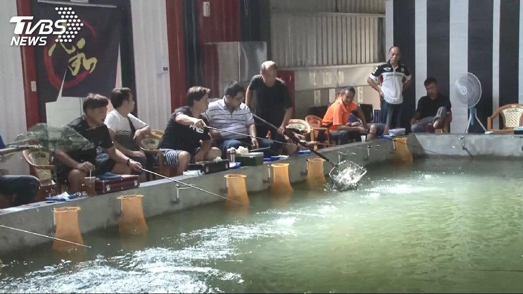 圖/TVBS 感覺上鉤猛力一拉 「限量蝦王」讓釣客笑翻