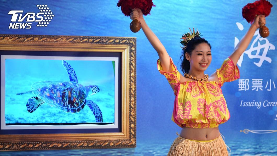 圖/中央社 台灣帛琉相同圖案郵票 鯊魚及綠蠵龜為主角