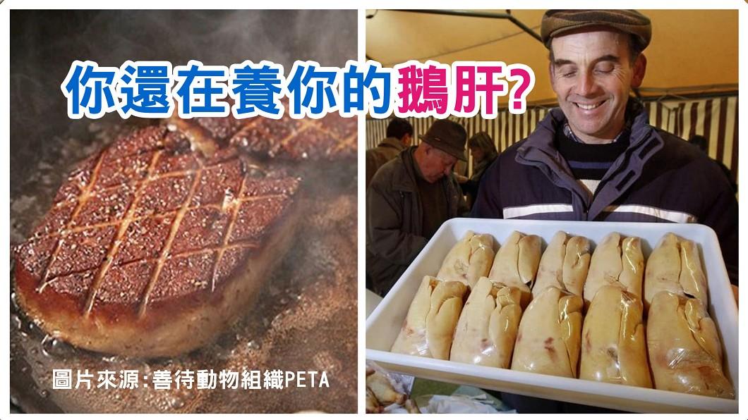 圖/善待動物組織PETA