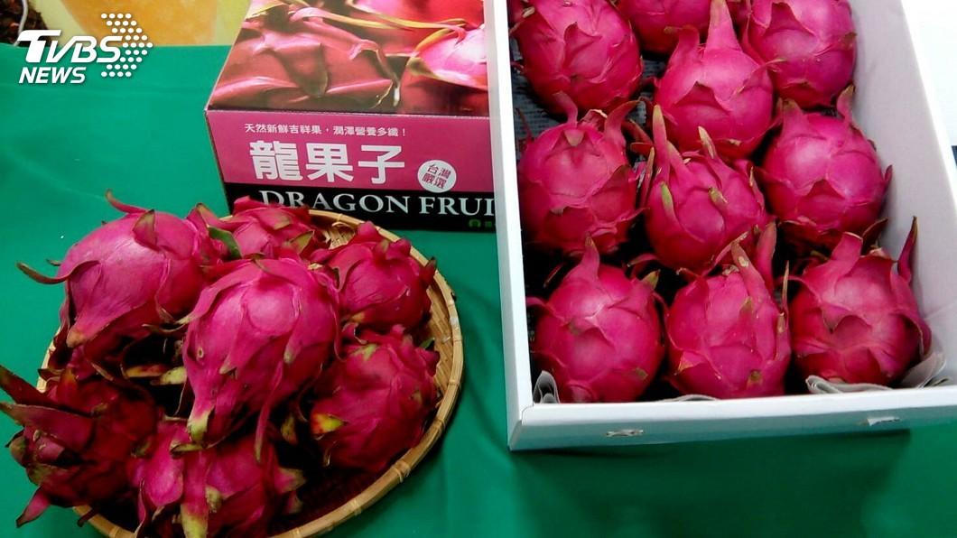 圖/中央社 紅龍果入產季 台南推禮盒宅配到府