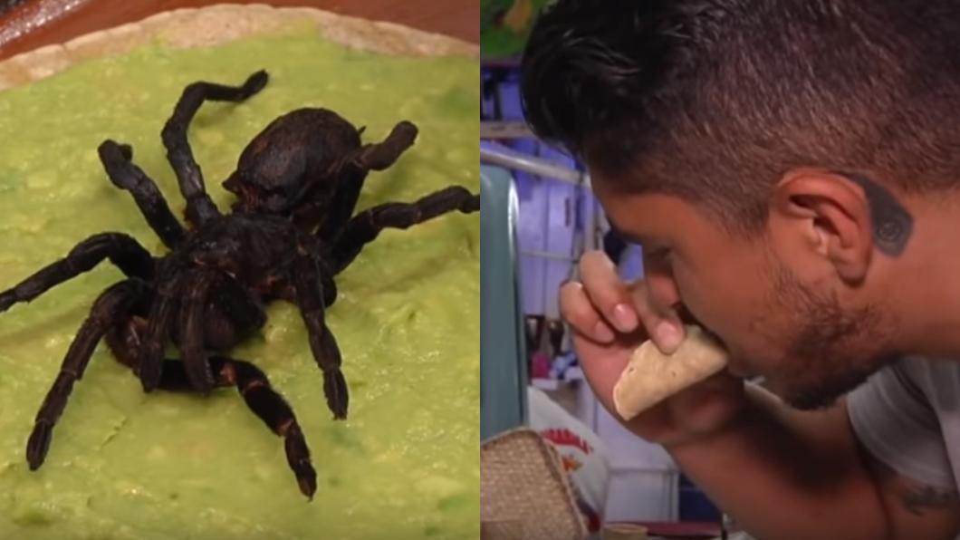 圖/翻攝自YouTube 太驚人!墨西哥塔可餅「夾狼蛛」 顧客讚:味道像螃蟹