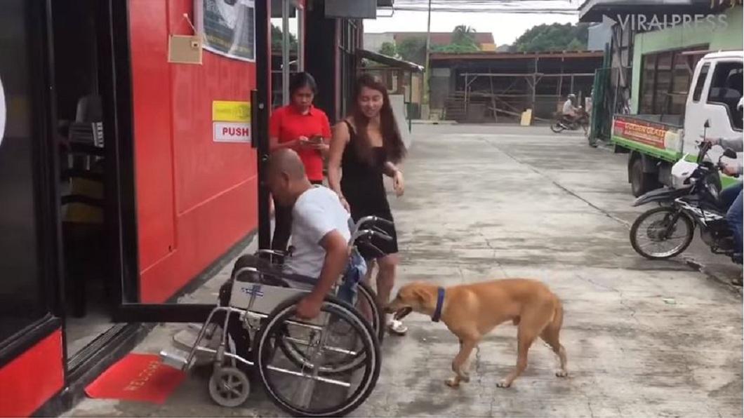 主人到哪裡忠犬都形影不離。(圖/翻攝自YouTube)