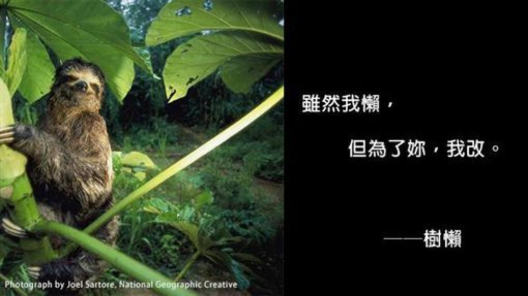 圖/翻攝自國家地理雜誌臉書