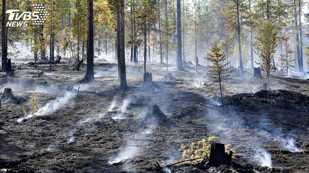 圖/達志影像美聯社 熱浪侵襲歐洲國家 野火肆虐造成傷亡