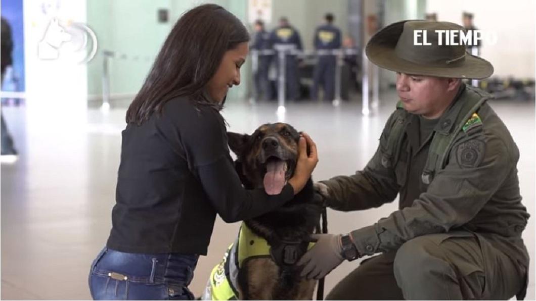 哥國警方不敢大意,現在暫時讓暗影在波哥大機場服務。(圖/翻攝自YouTube)