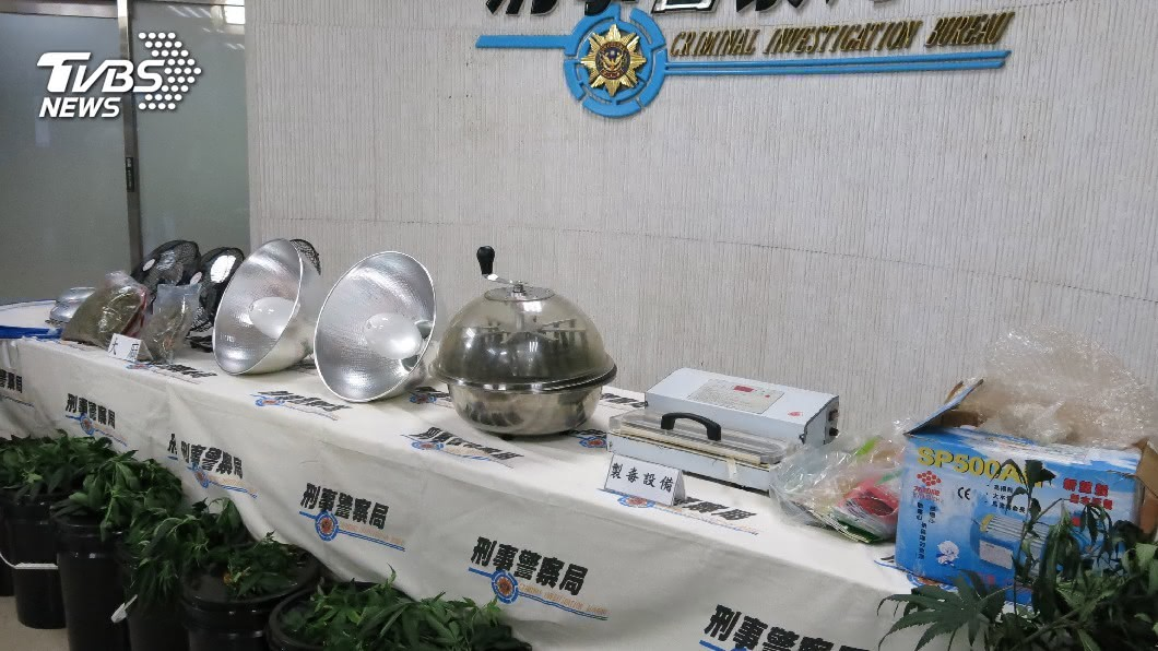 圖/中央社 水電工自學種大麻 警埋伏攻堅逮人