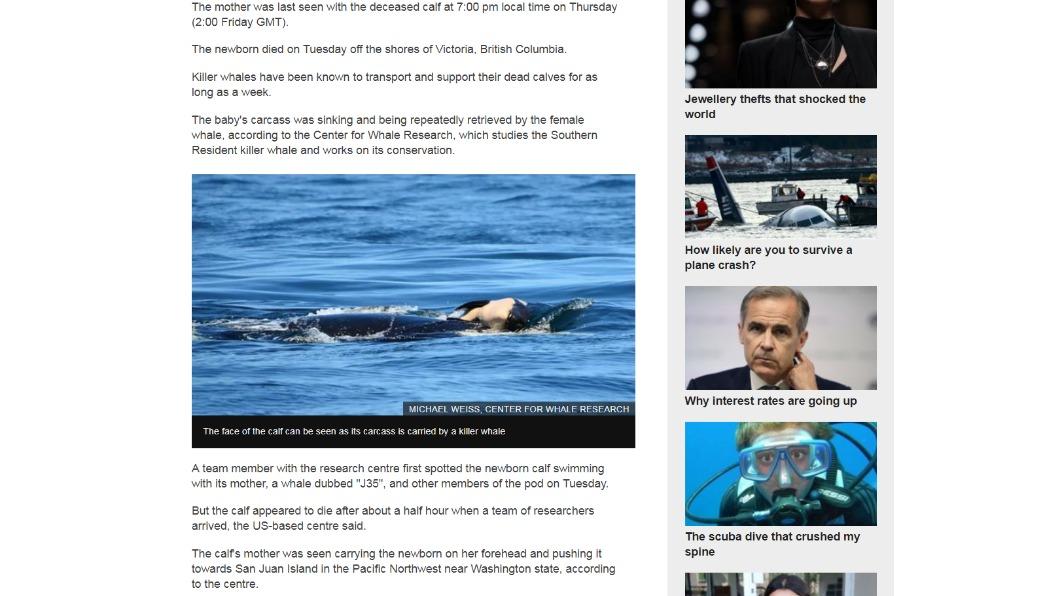 圖/翻攝自BBC