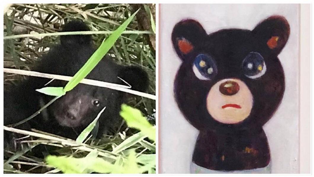 圖/中央社、翻攝自陳威廷臉書 媽媽在哪兒?他為「迷途小黑熊」創作求集氣
