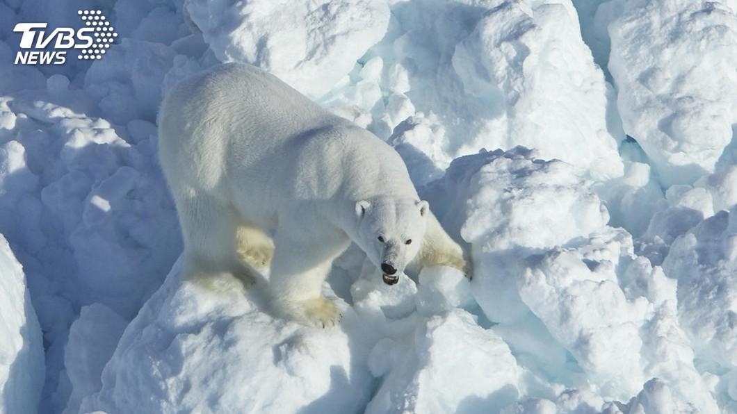 圖/達志影像美聯社 紐時回顧抗暖化關鍵10年 聚焦唐獎得主漢森
