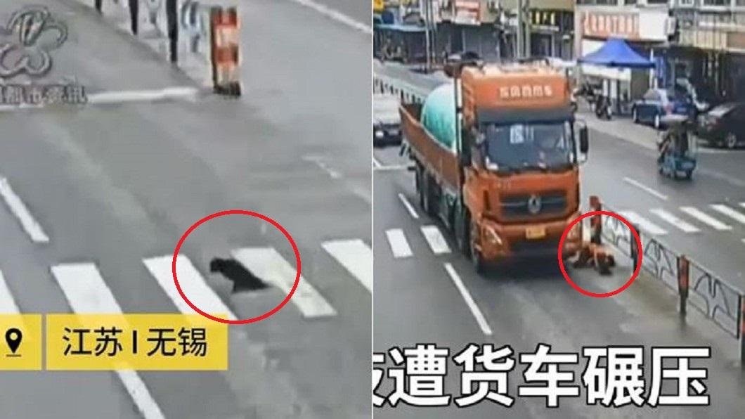 圖/翻攝自《梨視頻》 2腿緩慢爬!身障狗癱倒路中 愛心女急救援卻遭貨車狠輾