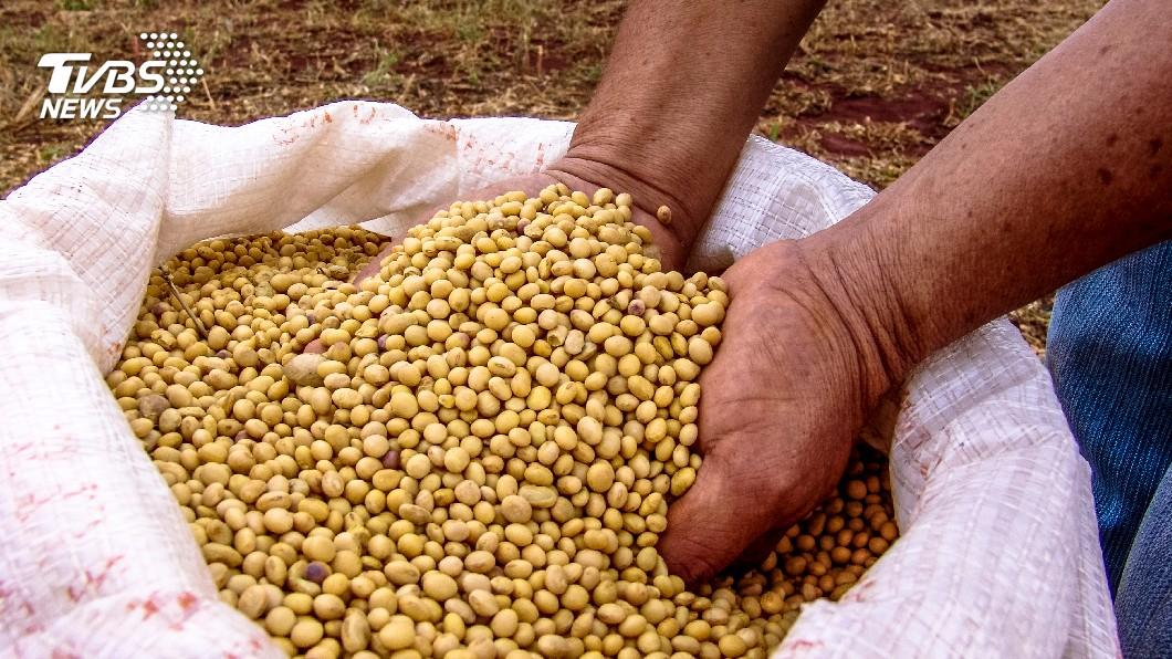 示意圖/TVBS 【事實查核】政府向美進口16.5億美元基改大豆?錯!