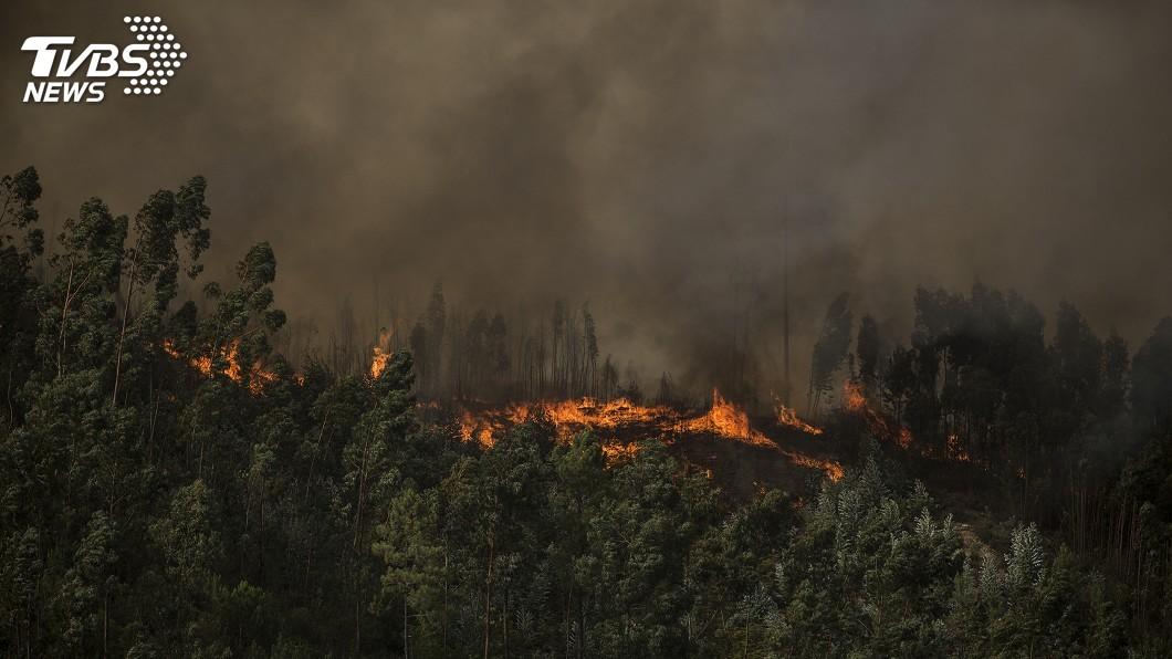 圖/達志影像美聯社 葡萄牙南部野火蔓延 濃厚黑煙遮蔽海灘勝地