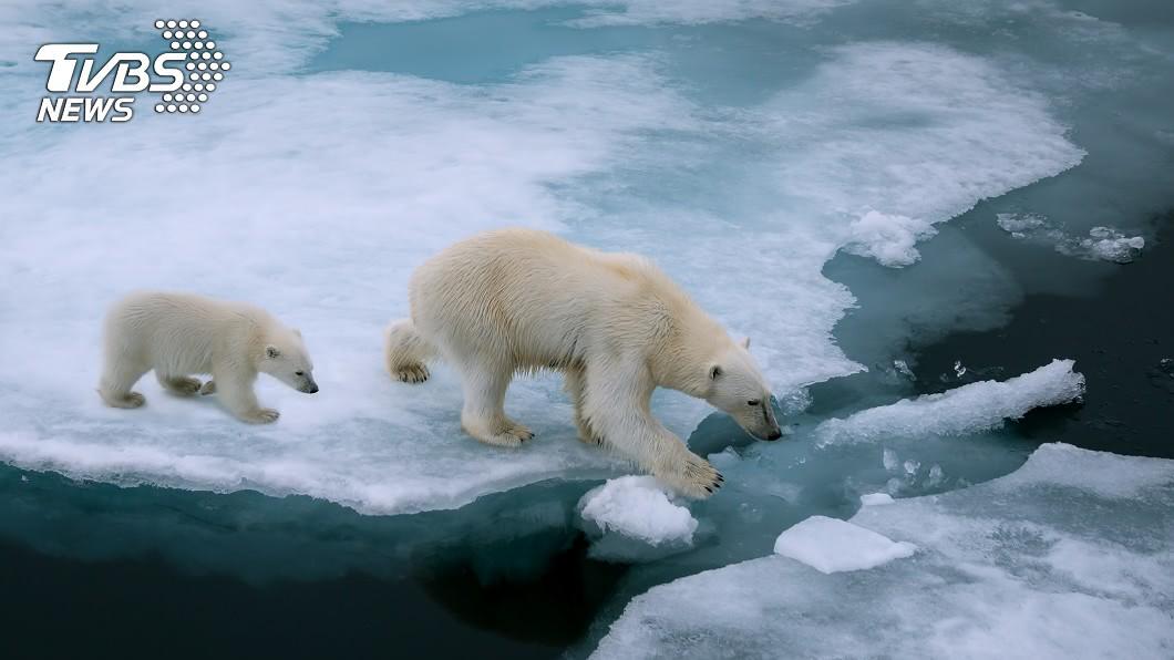示意圖/TVBS 若再不減碳 全球將錯過2020抑制暖化轉捩點