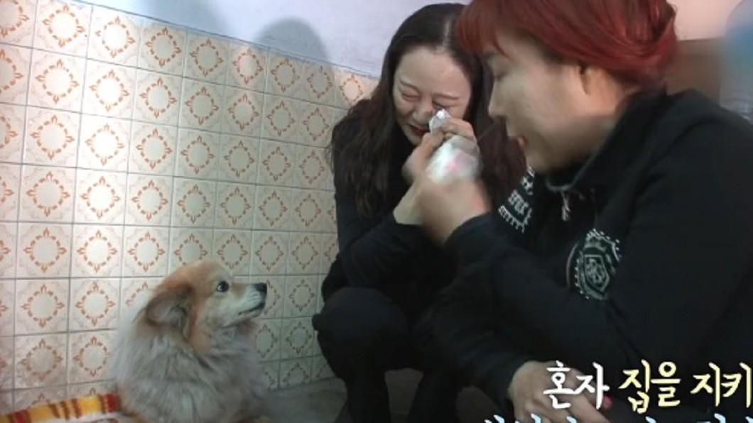 圖/翻攝自SBS TV