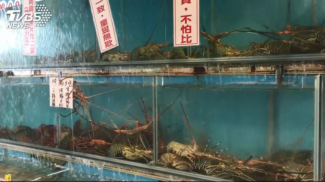 圖/TVBS 蛤~這是龍蝦? 消費者嘆「不應該抓幼齒的」