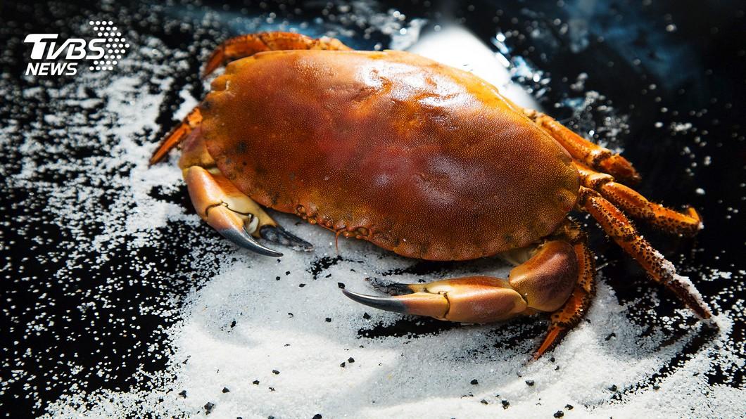陽澄湖大閘蟹是不少饕客品嘗秋蟹的首選。圖/TVBS