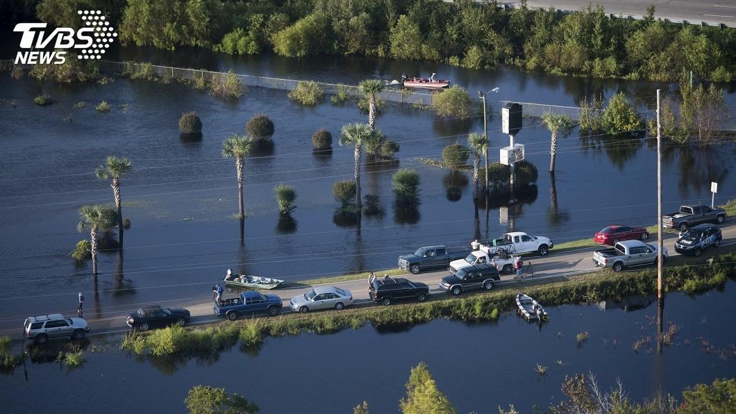 圖/達志影像美聯社 颶風佛羅倫斯重創 美國北卡州340萬隻家禽死亡