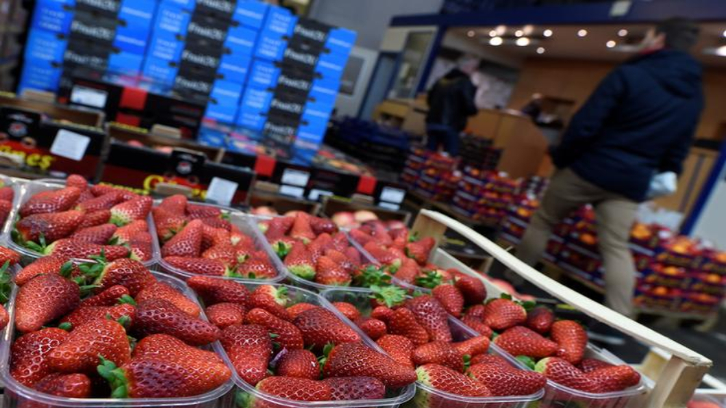 圖/達志影像路透 草莓藏針恐慌擴及紐西蘭 澳洲草莓遭下架