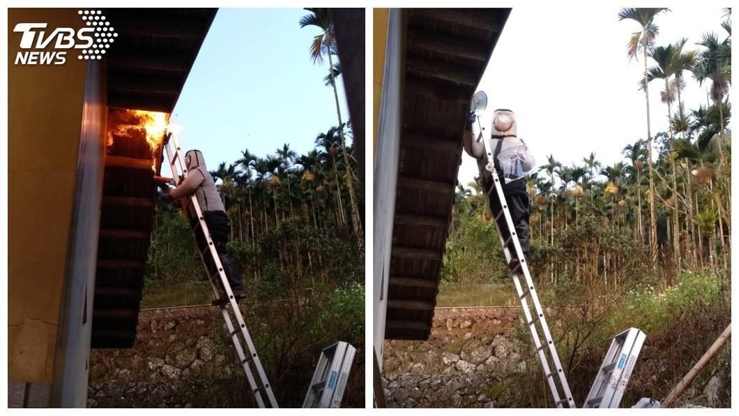事後警消將虎頭蜂窩拆除。(圖/TVBS)