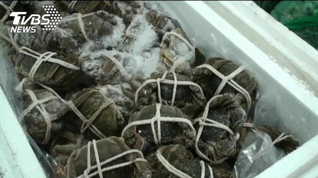 不肖業者偷放行戴奧辛大閘蟹,民眾恐怕已吃下肚。圖/TVBS 戴奧辛大閘蟹恐被吃下肚 醫師建議這樣做