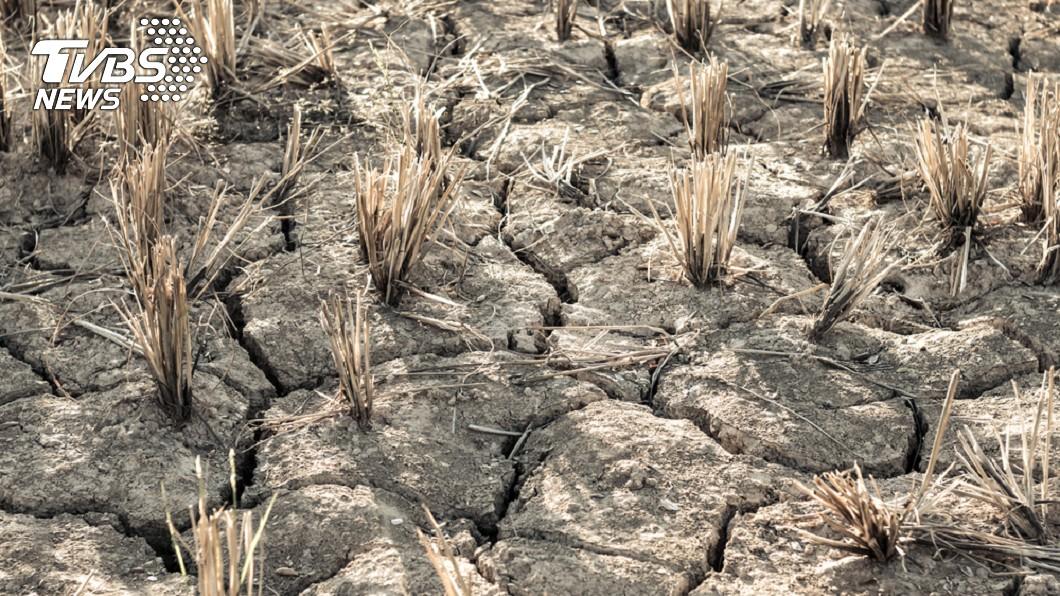 示意圖。圖/TVBS 釀5千萬人死亡! 科學家警告:19世紀大乾旱恐將重現
